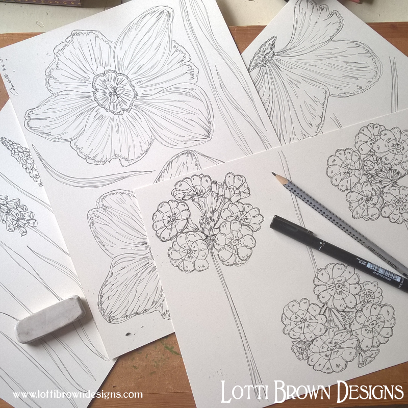 Starting my spring flower drawings