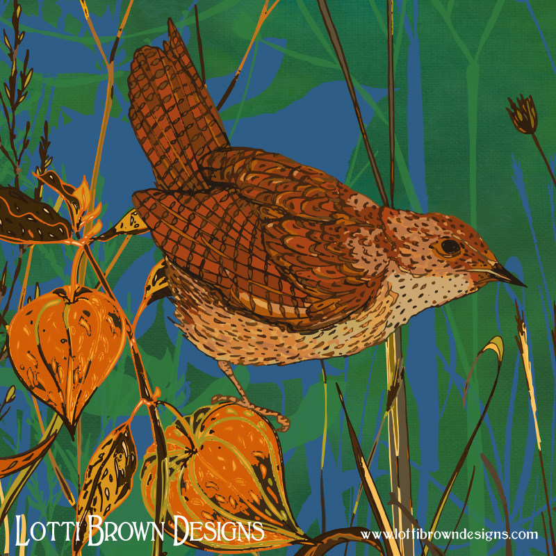 Detail from my Wren and Physalis artwork