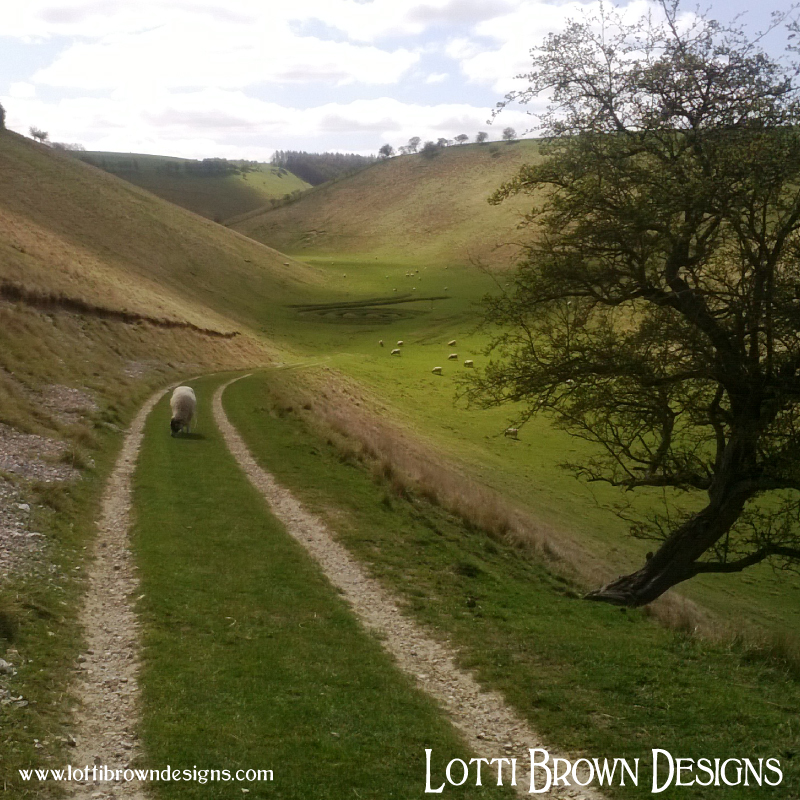 Beautiful gentle hills and wallowing dales in the Yorkshire Wolds