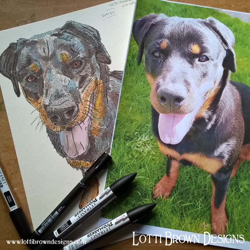 I use your pet photos to create my drawings