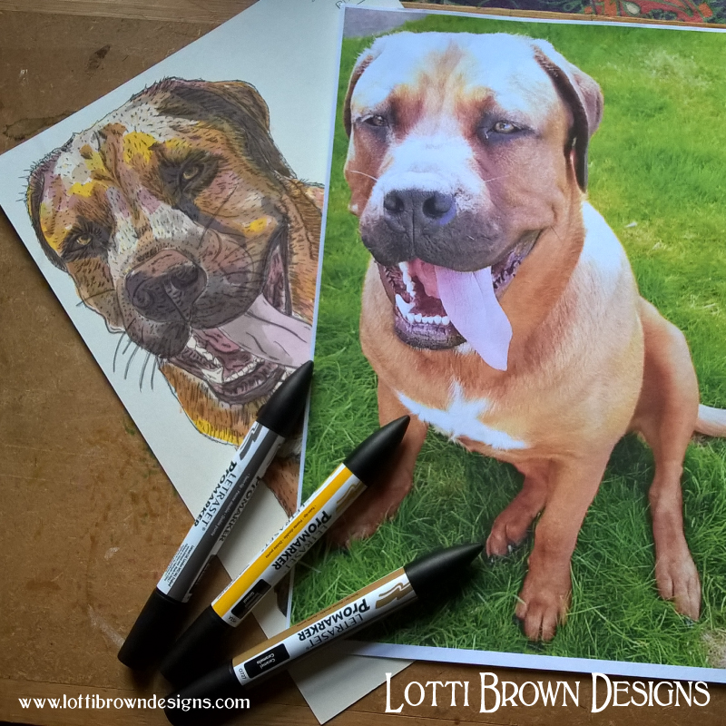 And I use my drawings to create your final pet portrait