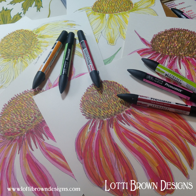 Colourful coneflower drawings in Promarker