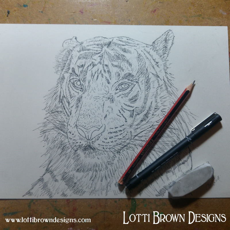 Starting my tiger drawing