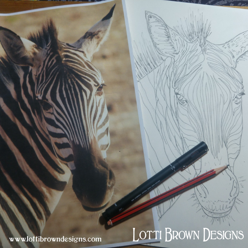 Starting to draw out my zebras
