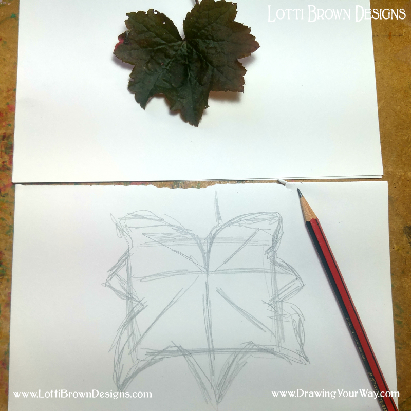 Sketching in the shape of the leaf