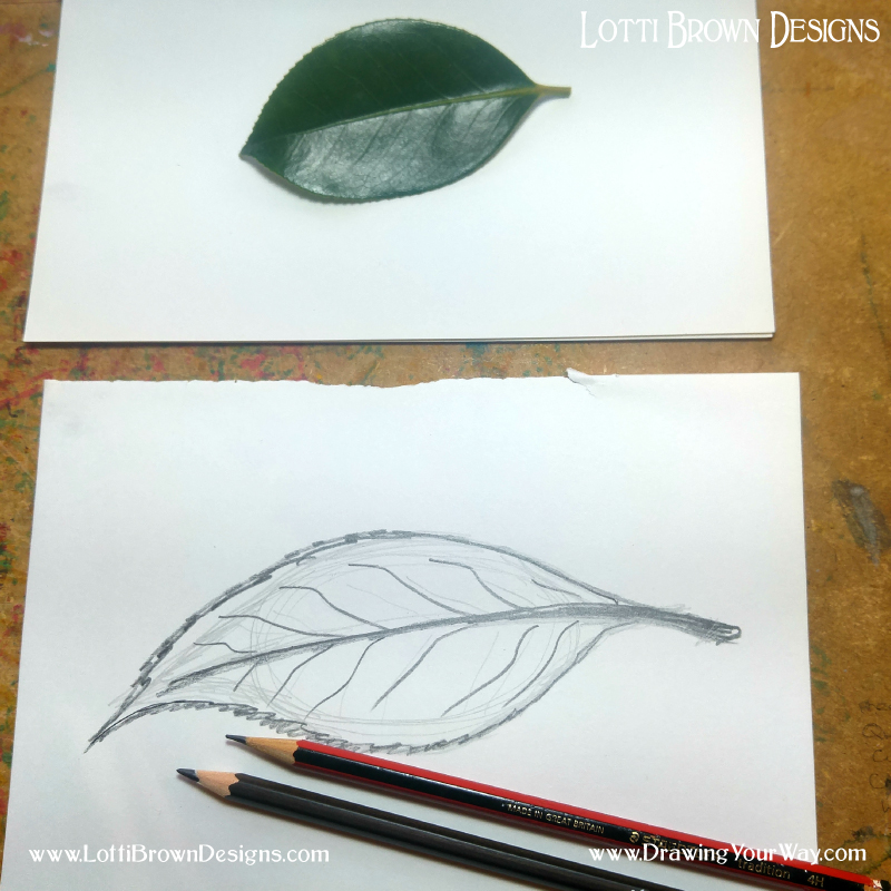 Drawing using a 4B pencil
