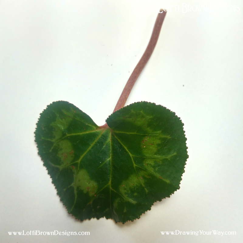 I think this leaf looks heart-shaped - click to get it to draw