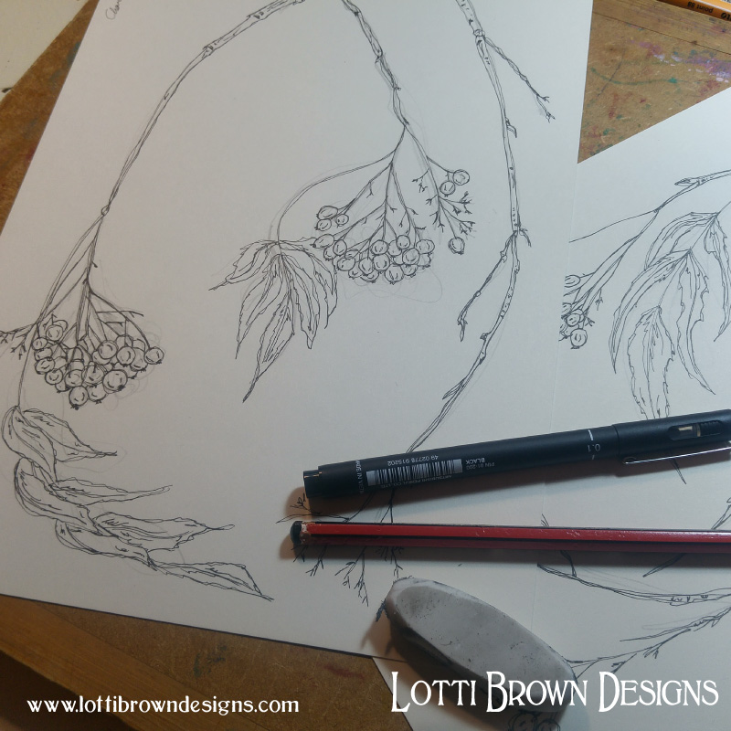 Drawing rowan berries