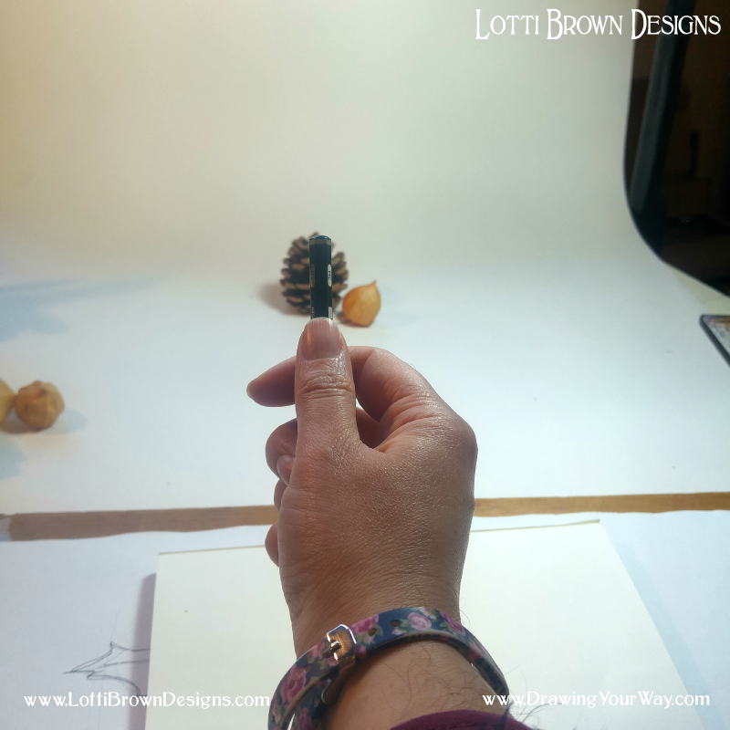 Then I check the height of the pinecone in the same way - and discover that the height and the width are roughly the same