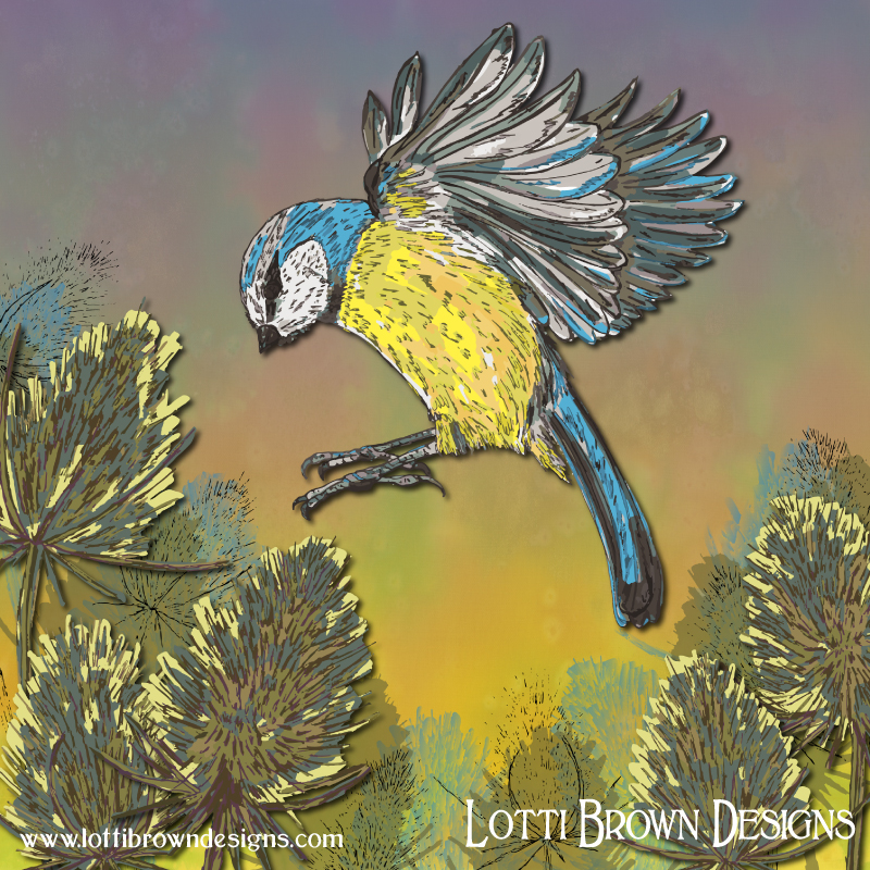 'Blue Tit and Teasel' art by Lotti Brown