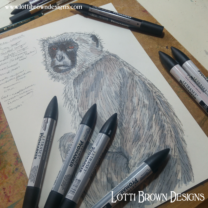 Gray langur drawing with Promarkers - work in progress