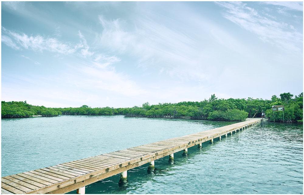 Giligans Island Bridge web.jpg