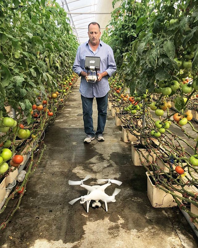 @shorelinedigital knows that sometimes you need to fly a drone through a tomato house to best tell the story. 🍅 🎥 . . #capecod #farm #tomatoes #drone #storytelling
