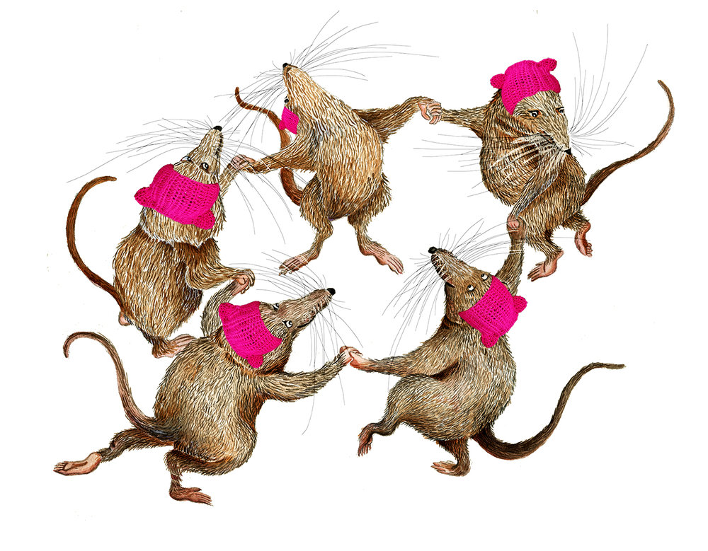 Five little shrews exercise their right and left hands are joined, they are wise and shrewd caps adorn their heads, the fat cat can't wear a hat over his hair --he's a fussy pussycat, imagine that.