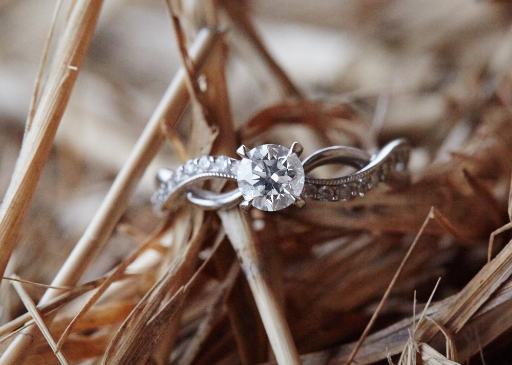 Erin&Mitch Engagement 4950.jpg