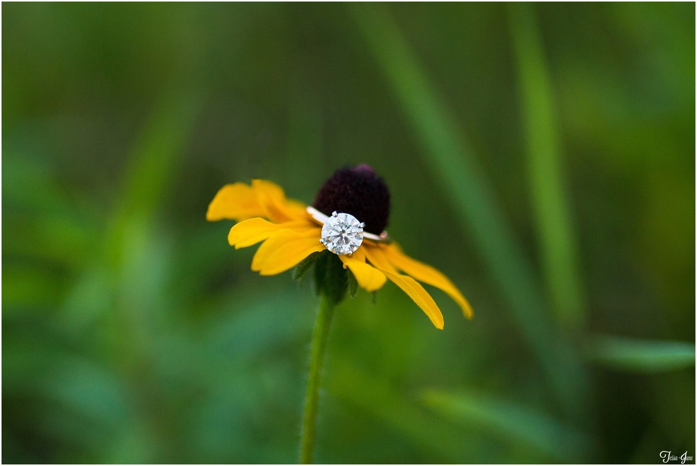 st-cloud-engagement-quarries-destination-wedding-photographer