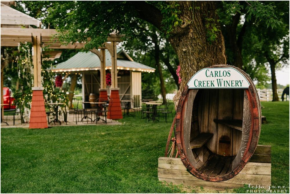 http://www.tessajunephotography.com/photoblog/tawny-bobby-carlos-creek-winery-alexandria-minnesota-wedding