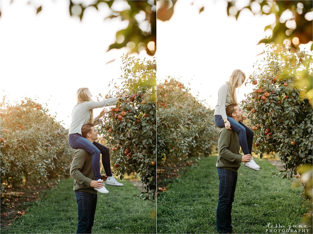 minnesota-harvest-orchard-engagement-st-cloud-wedding-photographer-fall-19.jpg
