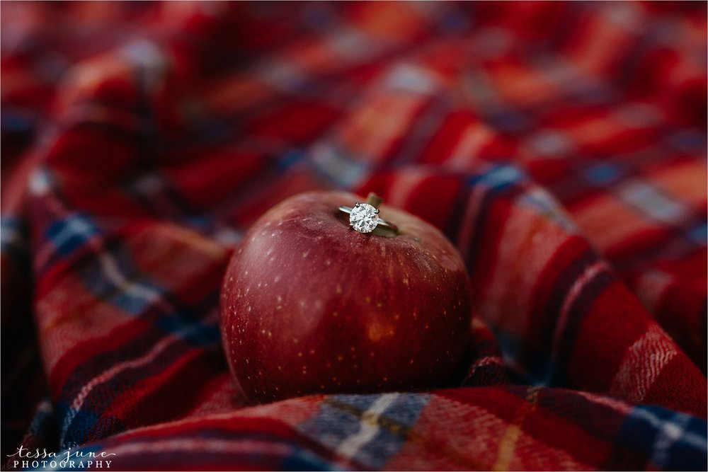 minnesota-harvest-orchard-engagement-st-cloud-wedding-photographer-fall-35.jpg