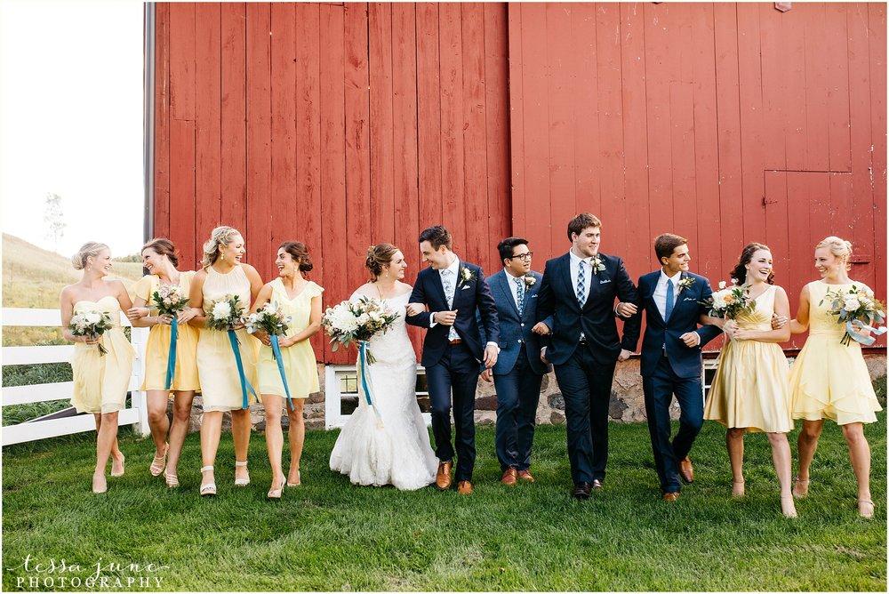 birch-hill-barn-glenwood-city-wisconsin-st-cloud-wedding-photographer-3981.jpg