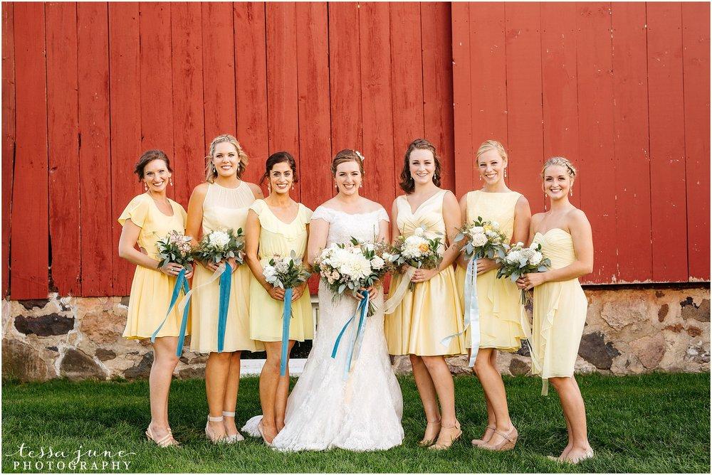 birch-hill-barn-glenwood-city-wisconsin-st-cloud-wedding-photographer-4017.jpg