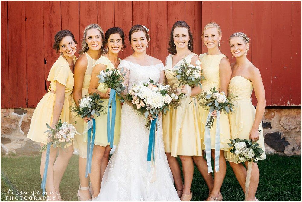 birch-hill-barn-glenwood-city-wisconsin-st-cloud-wedding-photographer-4041.jpg