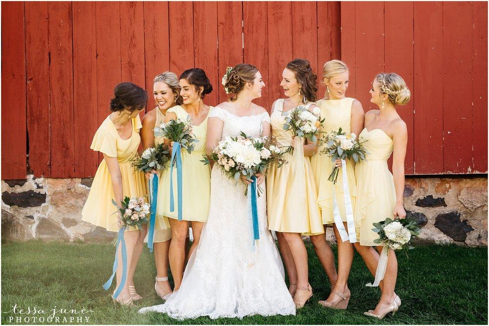 birch-hill-barn-glenwood-city-wisconsin-st-cloud-wedding-photographer-4051.jpg