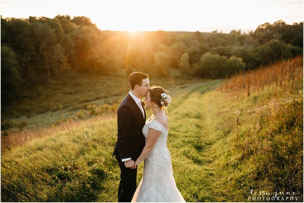 birch-hill-barn-glenwood-city-wisconsin-st-cloud-wedding-photographer-5064.jpg