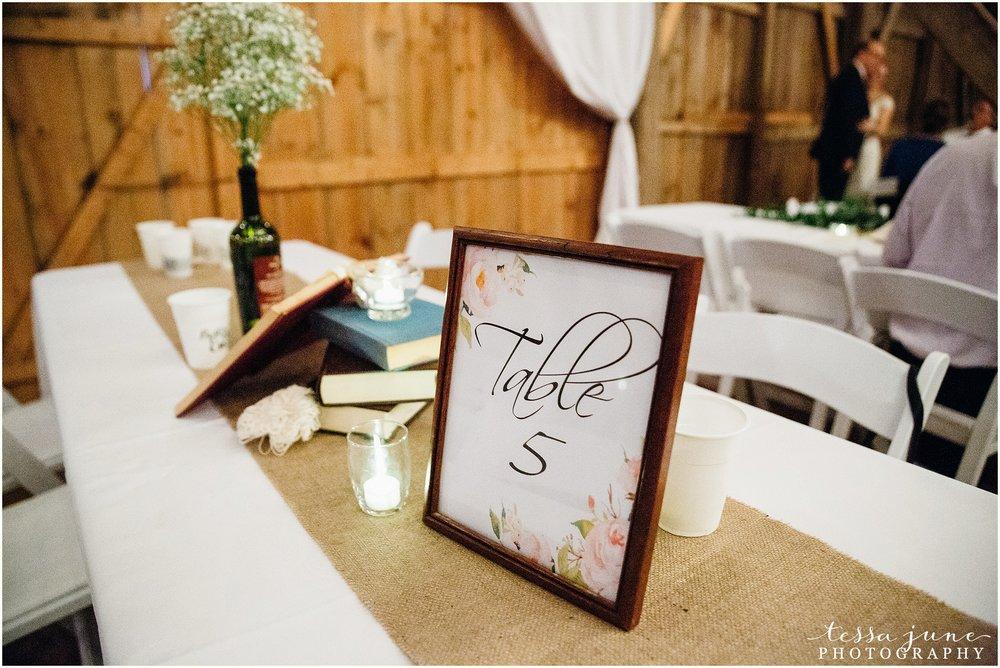 birch-hill-barn-glenwood-city-wisconsin-st-cloud-wedding-photographer-5223.jpg