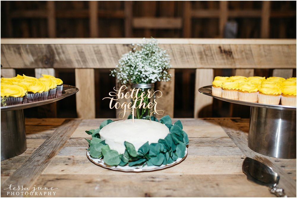 birch-hill-barn-glenwood-city-wisconsin-st-cloud-wedding-photographer-5405.jpg