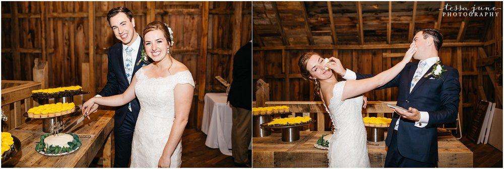 birch-hill-barn-glenwood-city-wisconsin-st-cloud-wedding-photographer-5406.jpg