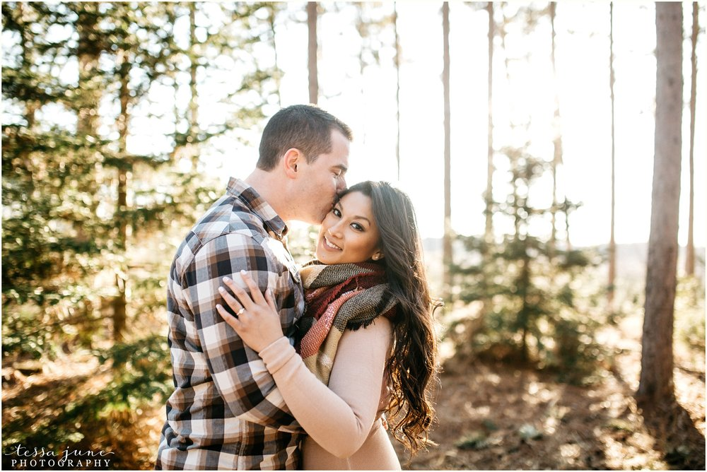 hansen-tree-farm-anoka-engagement-session-st-cloud-photographer-1.jpg