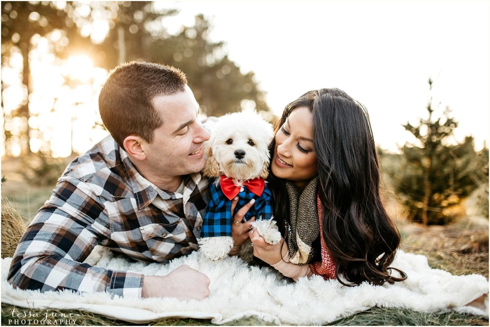 hansen-tree-farm-anoka-engagement-session-st-cloud-photographer-10.jpg