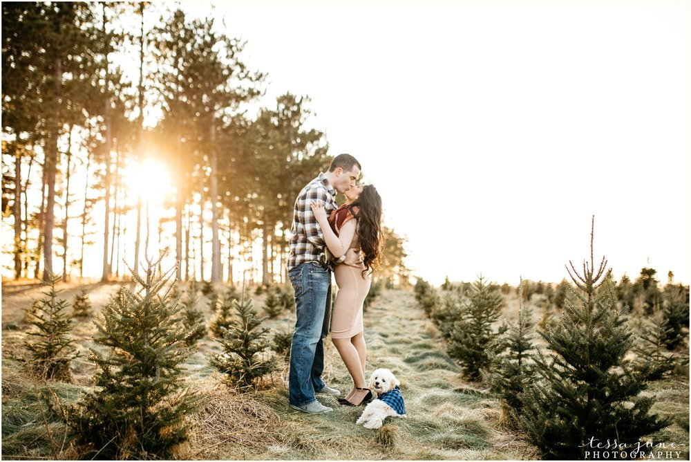 hansen-tree-farm-anoka-engagement-session-st-cloud-photographer-17.jpg