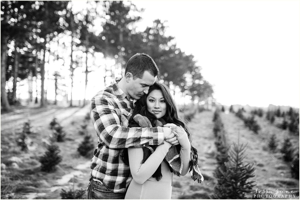 hansen-tree-farm-anoka-engagement-session-st-cloud-photographer-23.jpg