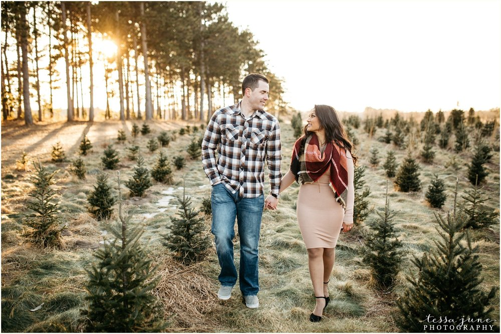 hansen-tree-farm-anoka-engagement-session-st-cloud-photographer-25.jpg
