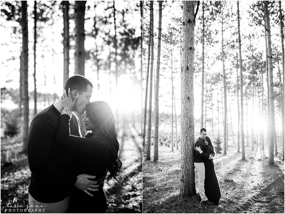 hansen-tree-farm-anoka-engagement-session-st-cloud-photographer-28.jpg