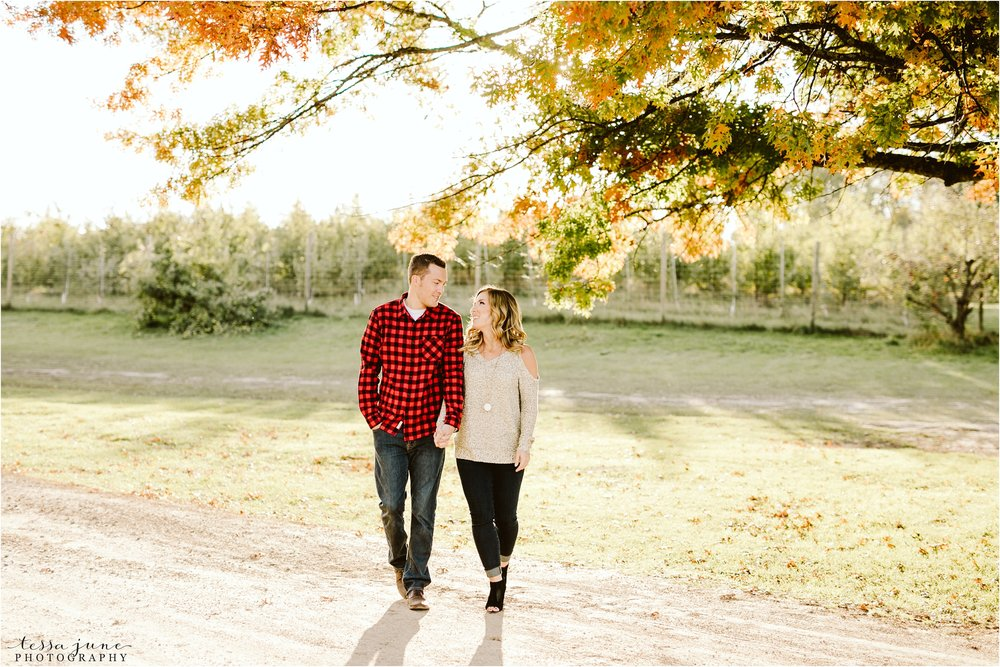 st-cloud-wedding-photographer-deer-lake-orchard-engagement-21.jpg