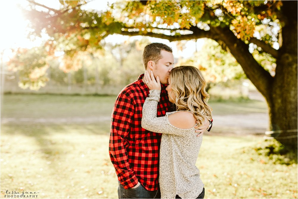 st-cloud-wedding-photographer-deer-lake-orchard-engagement-24.jpg