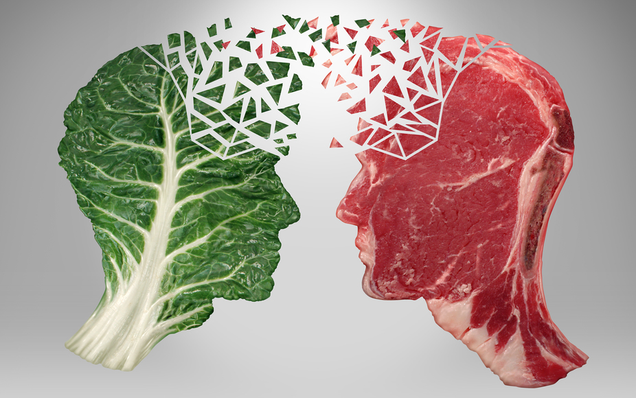 Great article on why we need to eat meat! Link Below http://theconversation.com/why-its-impossible-to-actually-be-a-vegetarian-55806