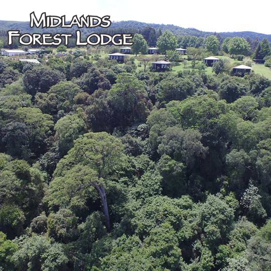 midlands forest lodge.png