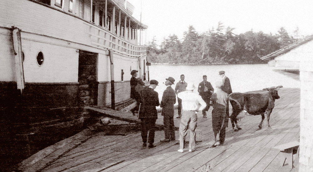 Hamilton Davis (above, left, with pipe) oversees the arrival of the hotel cow.