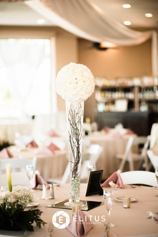 samuel+tanya-elitusphotos-wedding (18 of 544).jpg