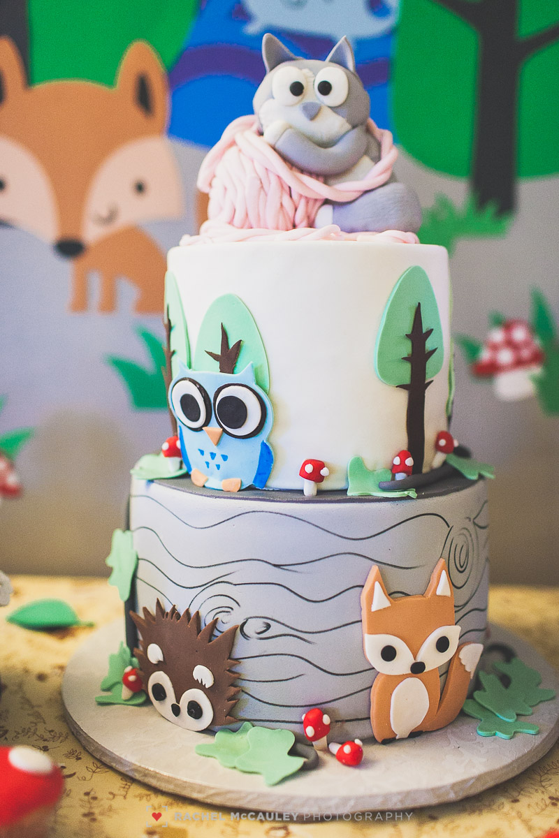 woodland creature baby shower photo-3343