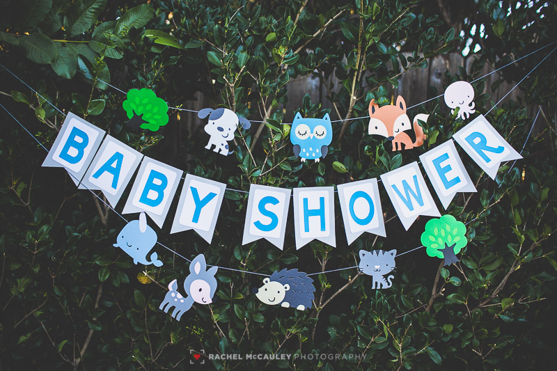 woodland creature baby shower photo-3395