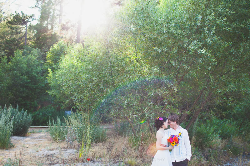 san moritz lodge crestline wedding photo-0355