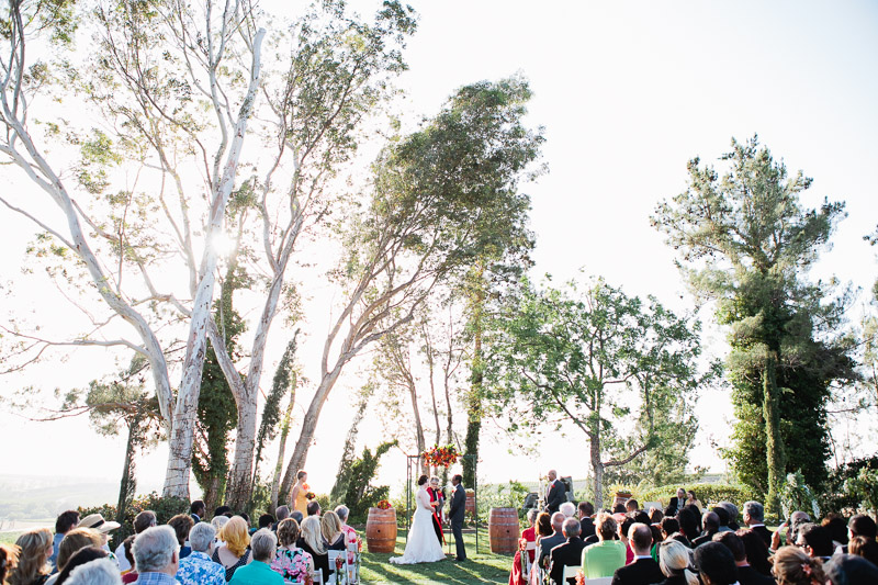 falkner winery temecula wedding-1036