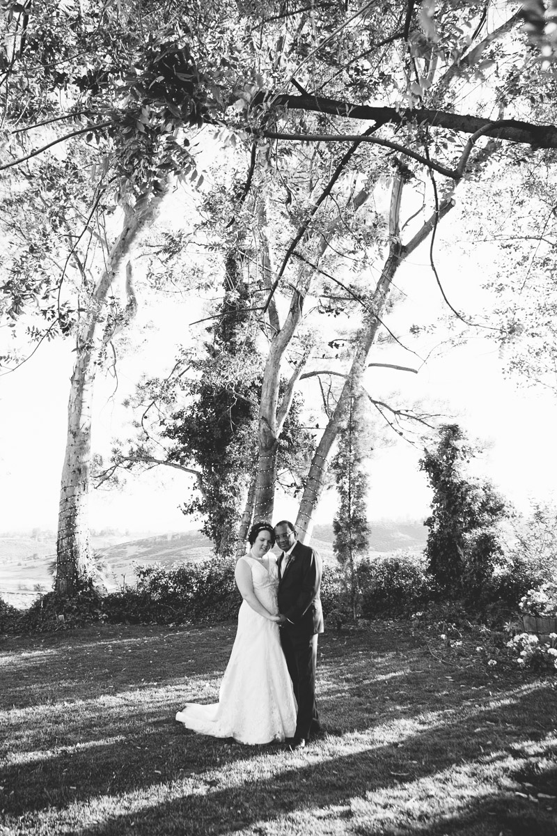 falkner winery temecula wedding-1062