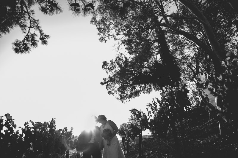 falkner winery temecula wedding-1064