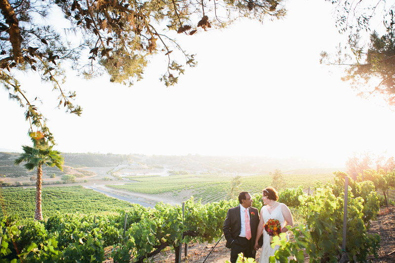 falkner winery temecula wedding-1065
